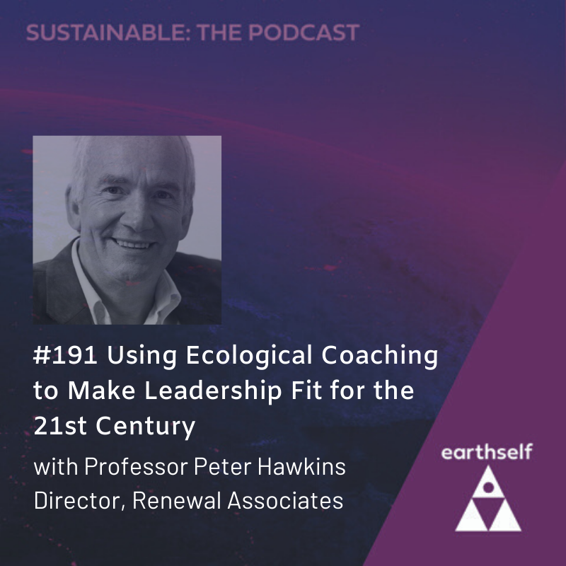 Using ecological coaching to make leadership fit for the 21st century